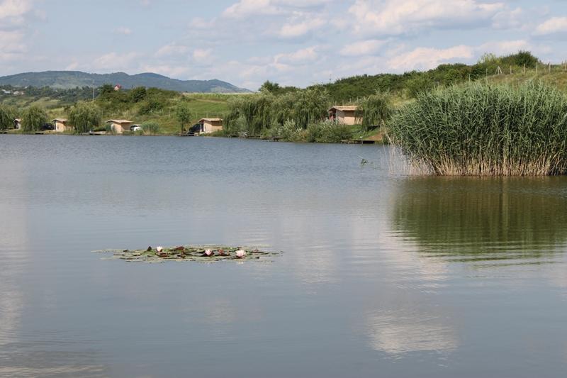 Cupa Toamnei Ed.III Lacul Green Paradise 2014